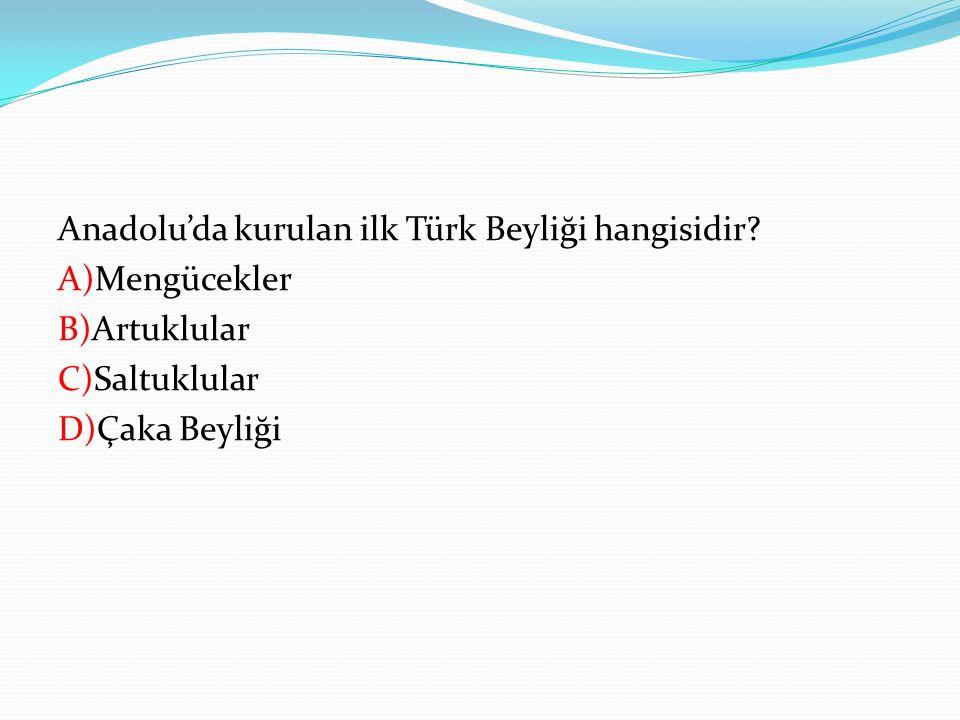 Anadolu'da kurulan ilk Türk Beyliği hangisidir
