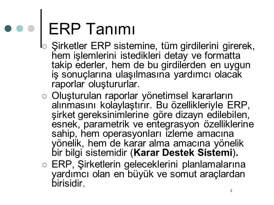 ERP Tanımı