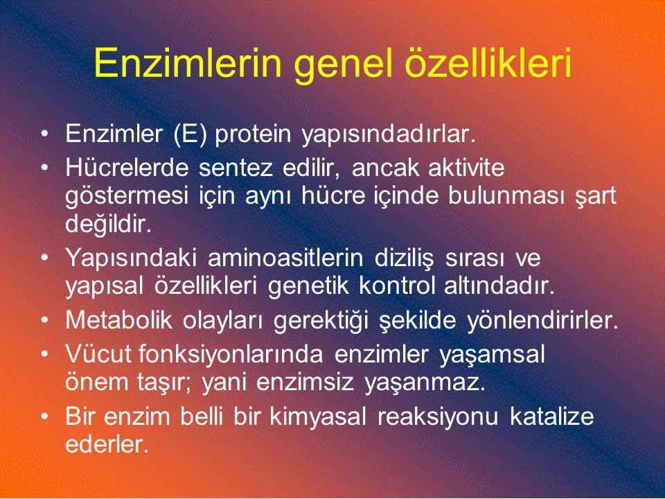 Enzimlerin genel özellikleri
