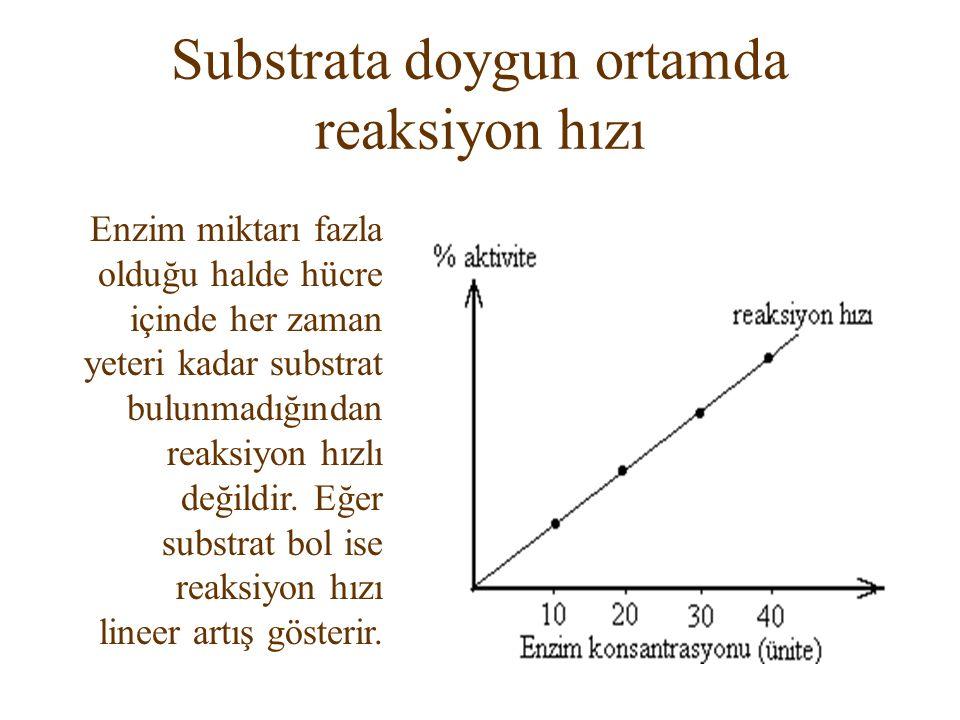 Substrata doygun ortamda reaksiyon hızı