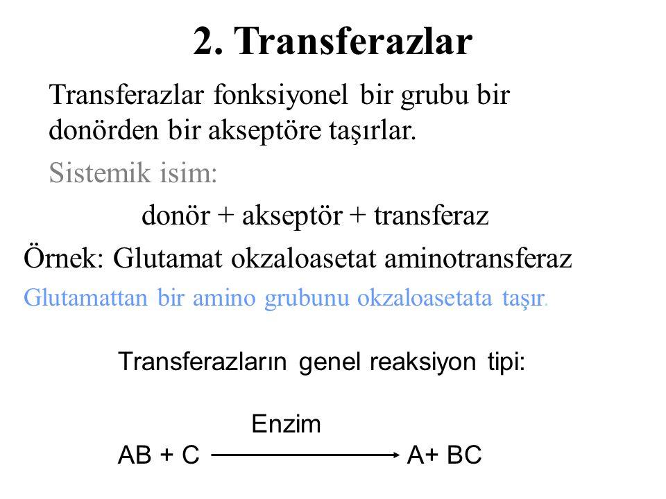 donör + akseptör + transferaz