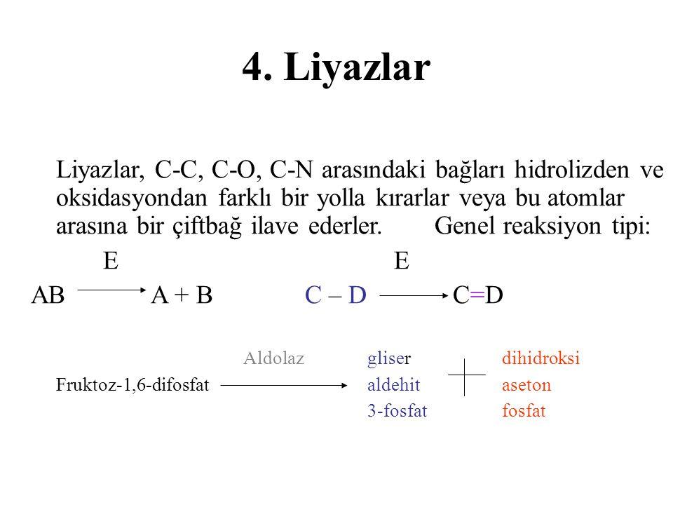 4. Liyazlar