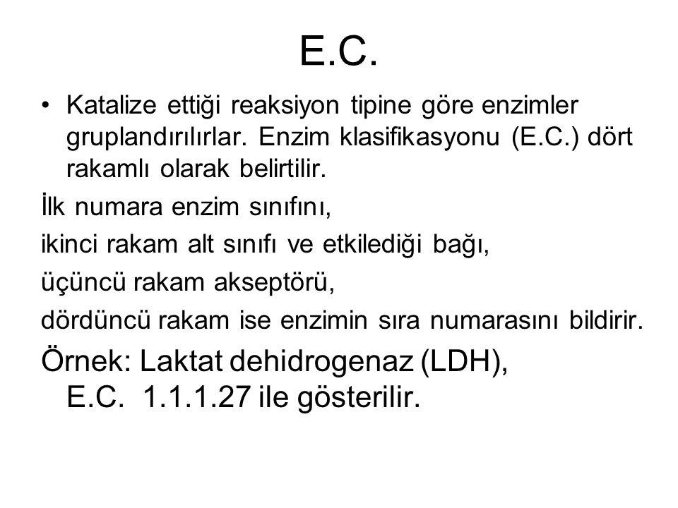 E.C. Örnek: Laktat dehidrogenaz (LDH), E.C. 1.1.1.27 ile gösterilir.