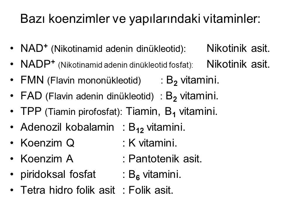 Bazı koenzimler ve yapılarındaki vitaminler: