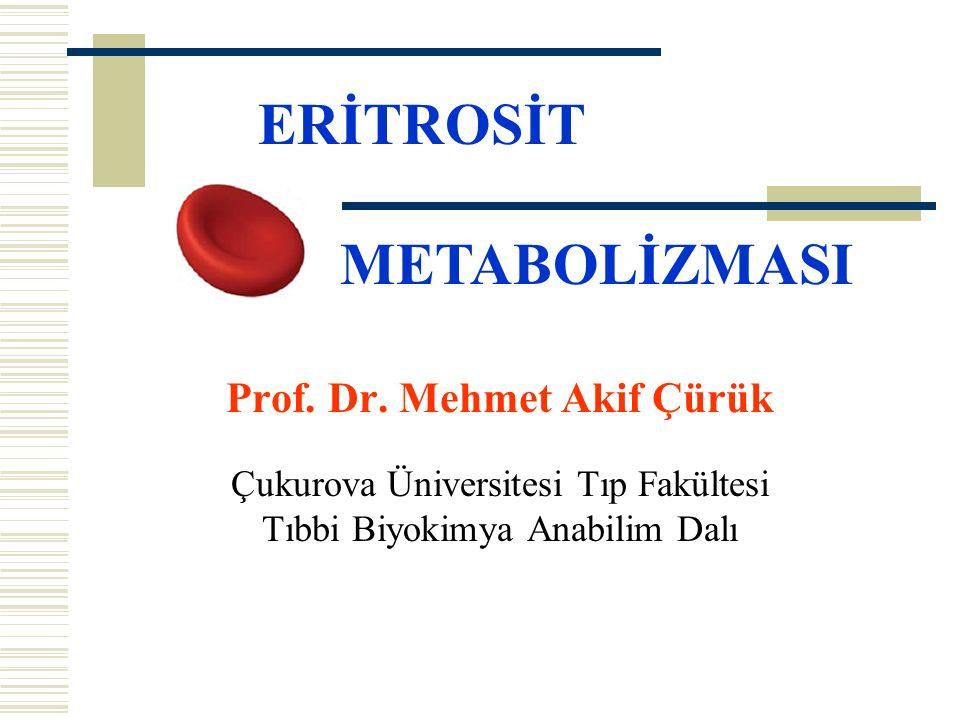 Prof. Dr. Mehmet Akif Çürük