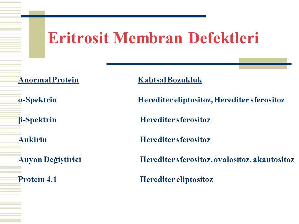 Eritrosit Membran Defektleri