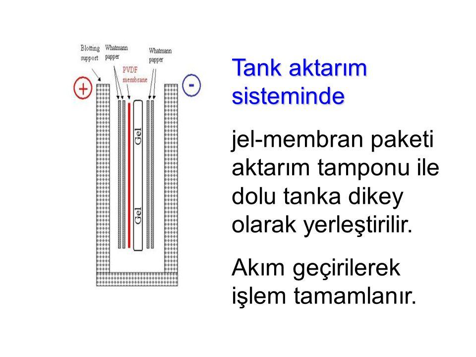 Tank aktarım sisteminde