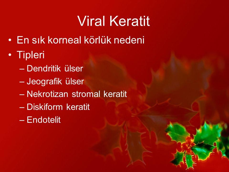 Viral Keratit En sık korneal körlük nedeni Tipleri Dendritik ülser