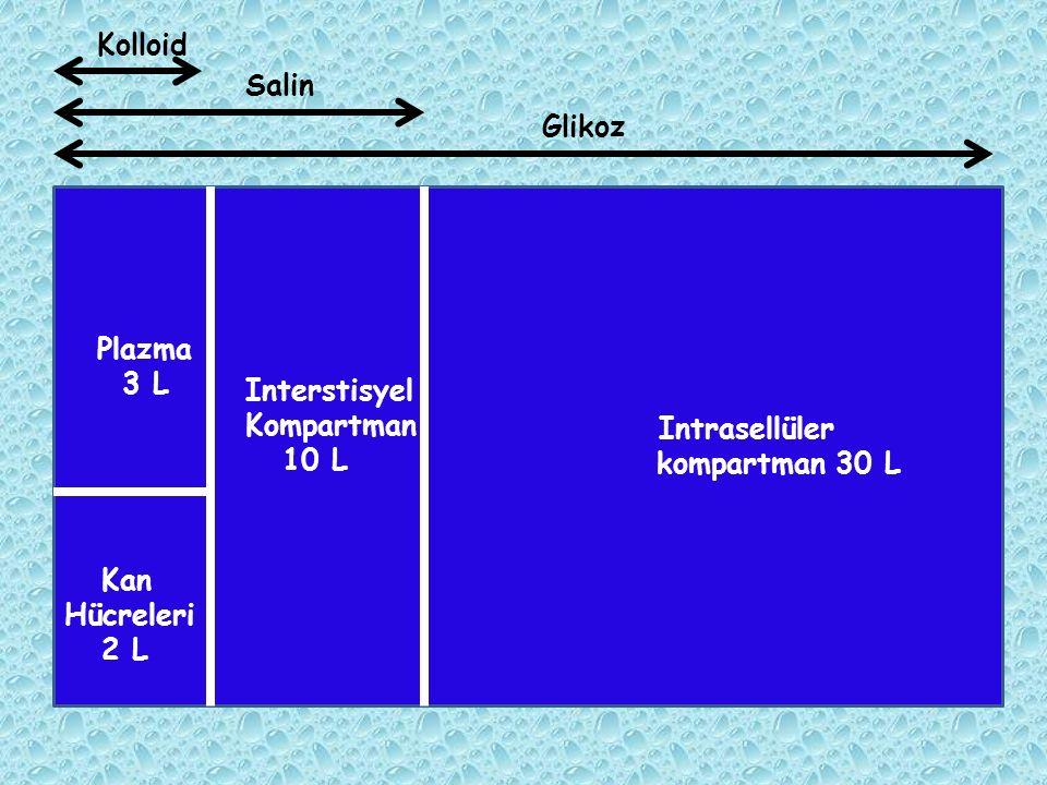 Kolloid Salin Glikoz kompartman 30 L Plazma 3 L Interstisyel