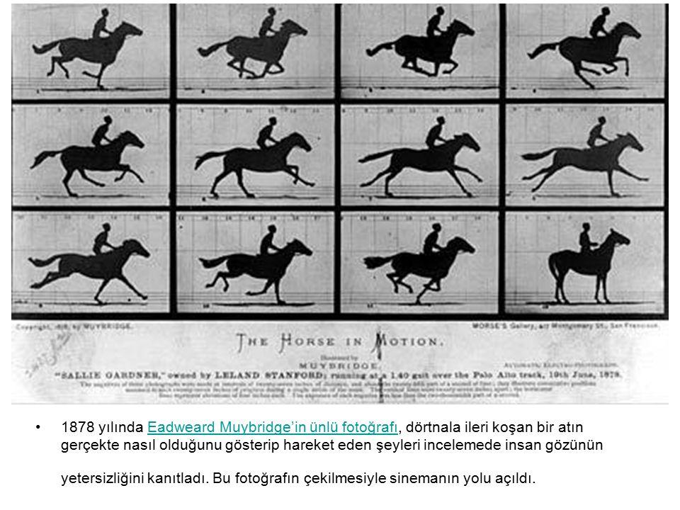 1878 yılında Eadweard Muybridge'in ünlü fotoğrafı, dörtnala ileri koşan bir atın gerçekte nasıl olduğunu gösterip hareket eden şeyleri incelemede insan gözünün yetersizliğini kanıtladı.