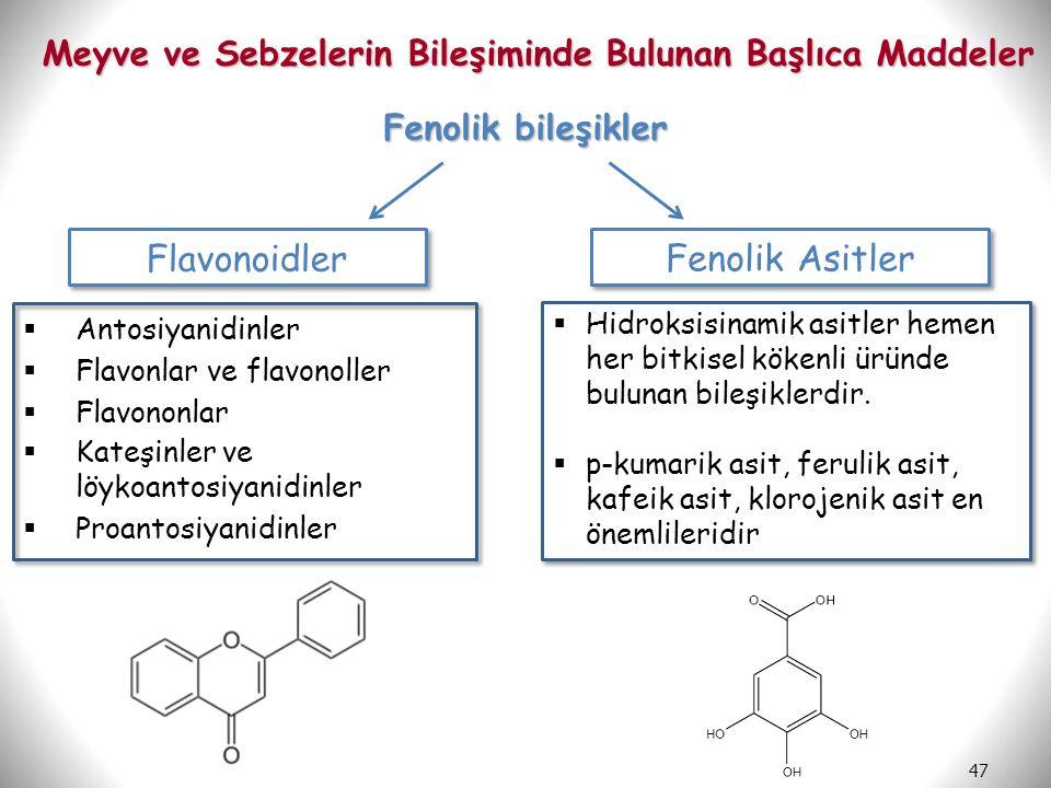 Meyve ve Sebzelerin Bileşiminde Bulunan Başlıca Maddeler