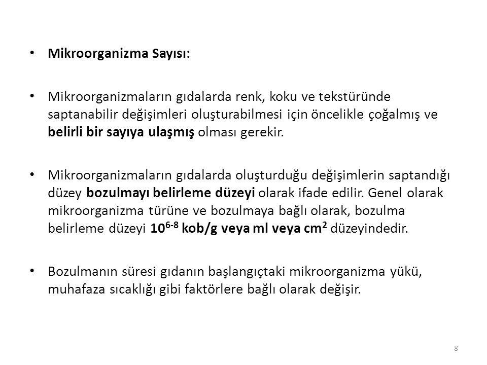 Mikroorganizma Sayısı: