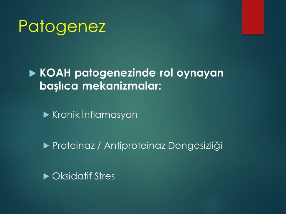 Patogenez KOAH patogenezinde rol oynayan başlıca mekanizmalar: