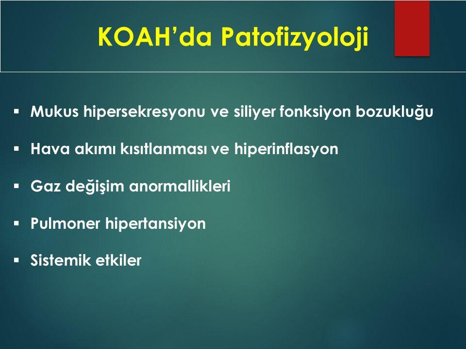 KOAH'da Patofizyoloji