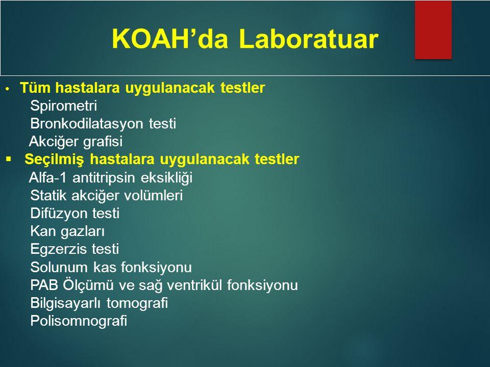 KOAH'da Laboratuar Spirometri Bronkodilatasyon testi Akciğer grafisi