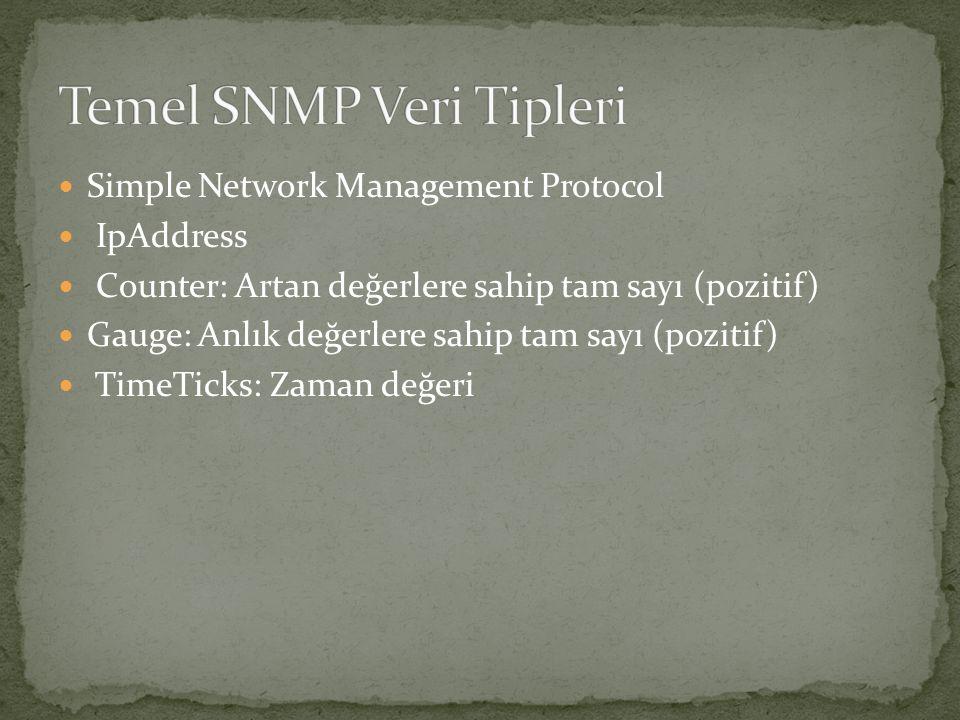 Temel SNMP Veri Tipleri