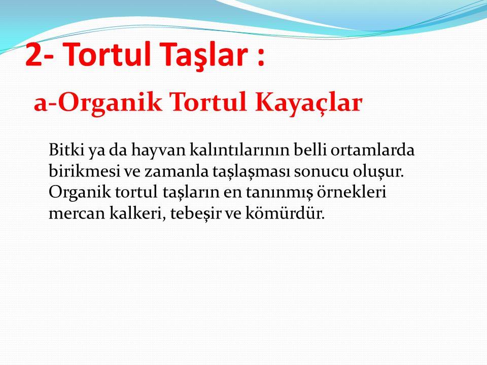 2- Tortul Taşlar :