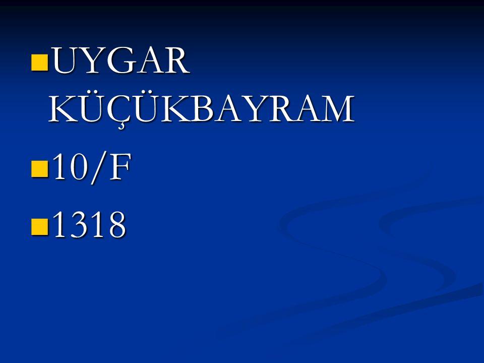 UYGAR KÜÇÜKBAYRAM 10/F 1318