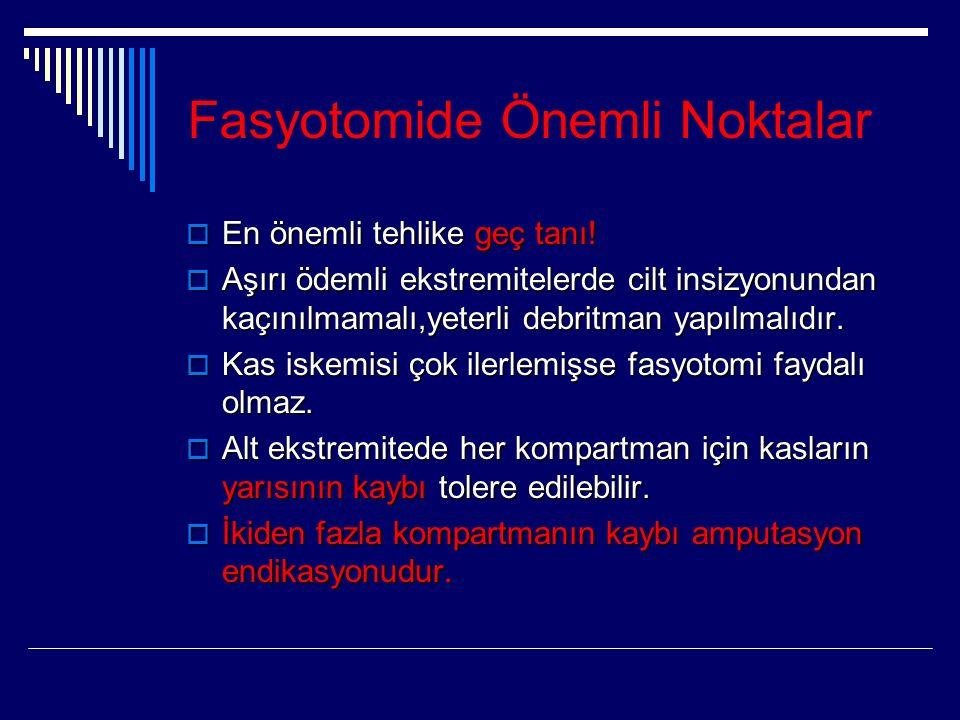 Fasyotomide Önemli Noktalar