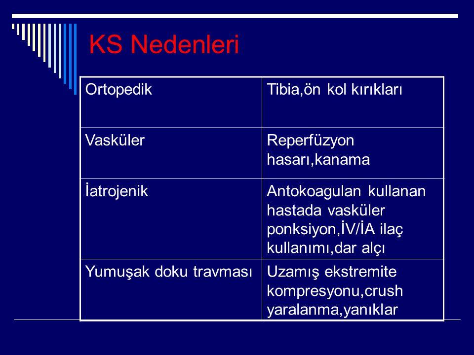KS Nedenleri Ortopedik Tibia,ön kol kırıkları Vasküler