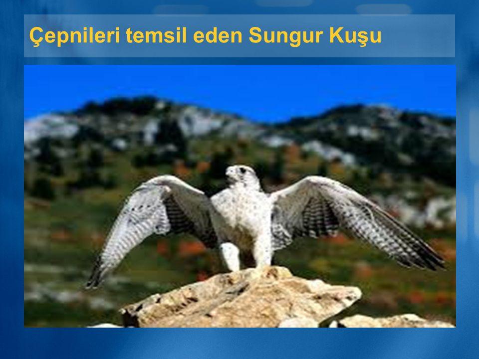 Çepnileri temsil eden Sungur Kuşu