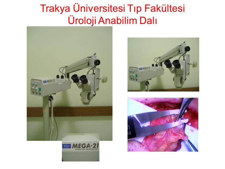 Trakya Üniversitesi Tıp Fakültesi Üroloji Anabilim Dalı