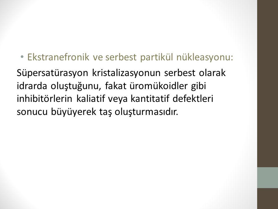 Ekstranefronik ve serbest partikül nükleasyonu: