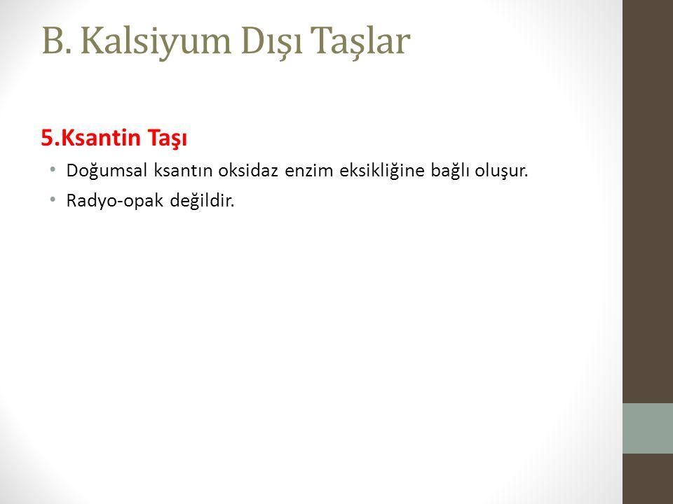 B. Kalsiyum Dışı Taşlar 5.Ksantin Taşı