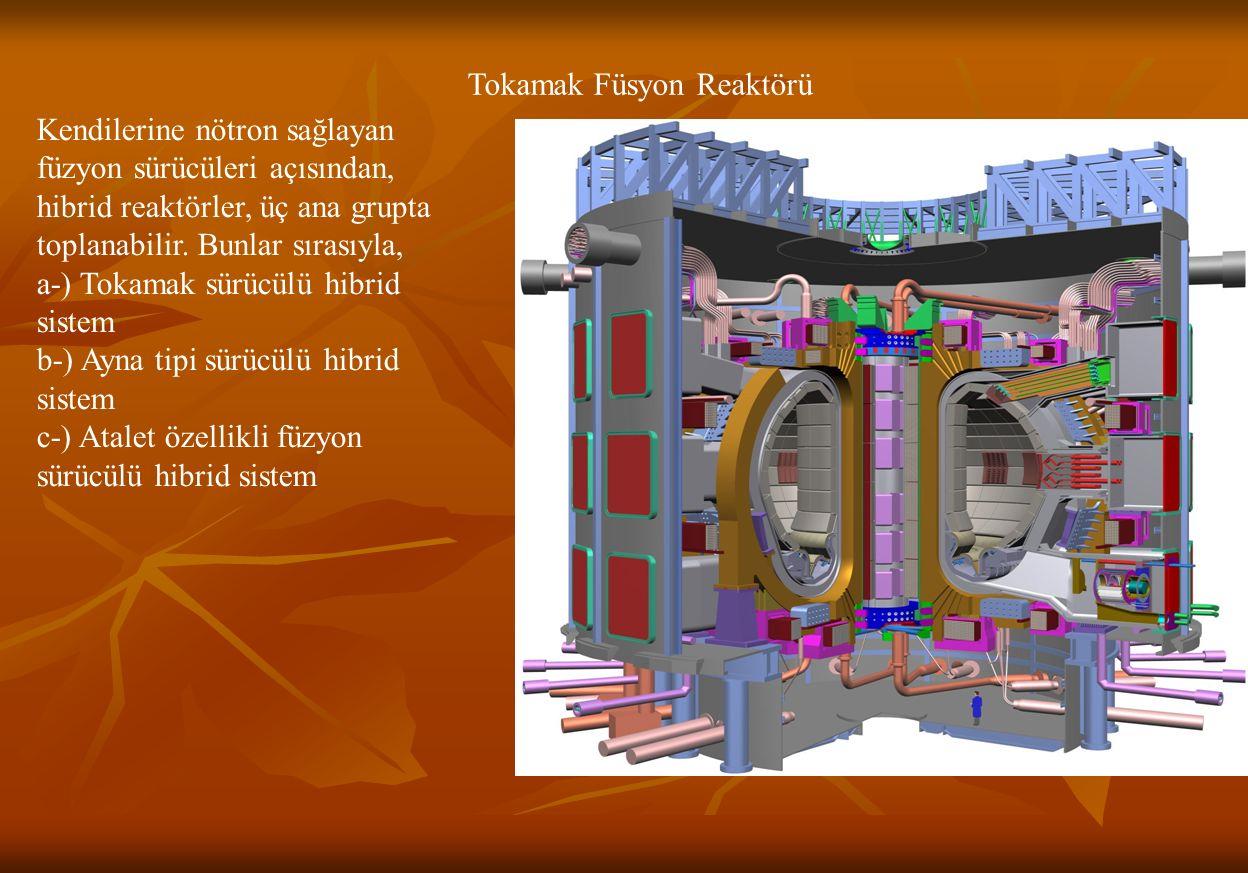 Tokamak Füsyon Reaktörü