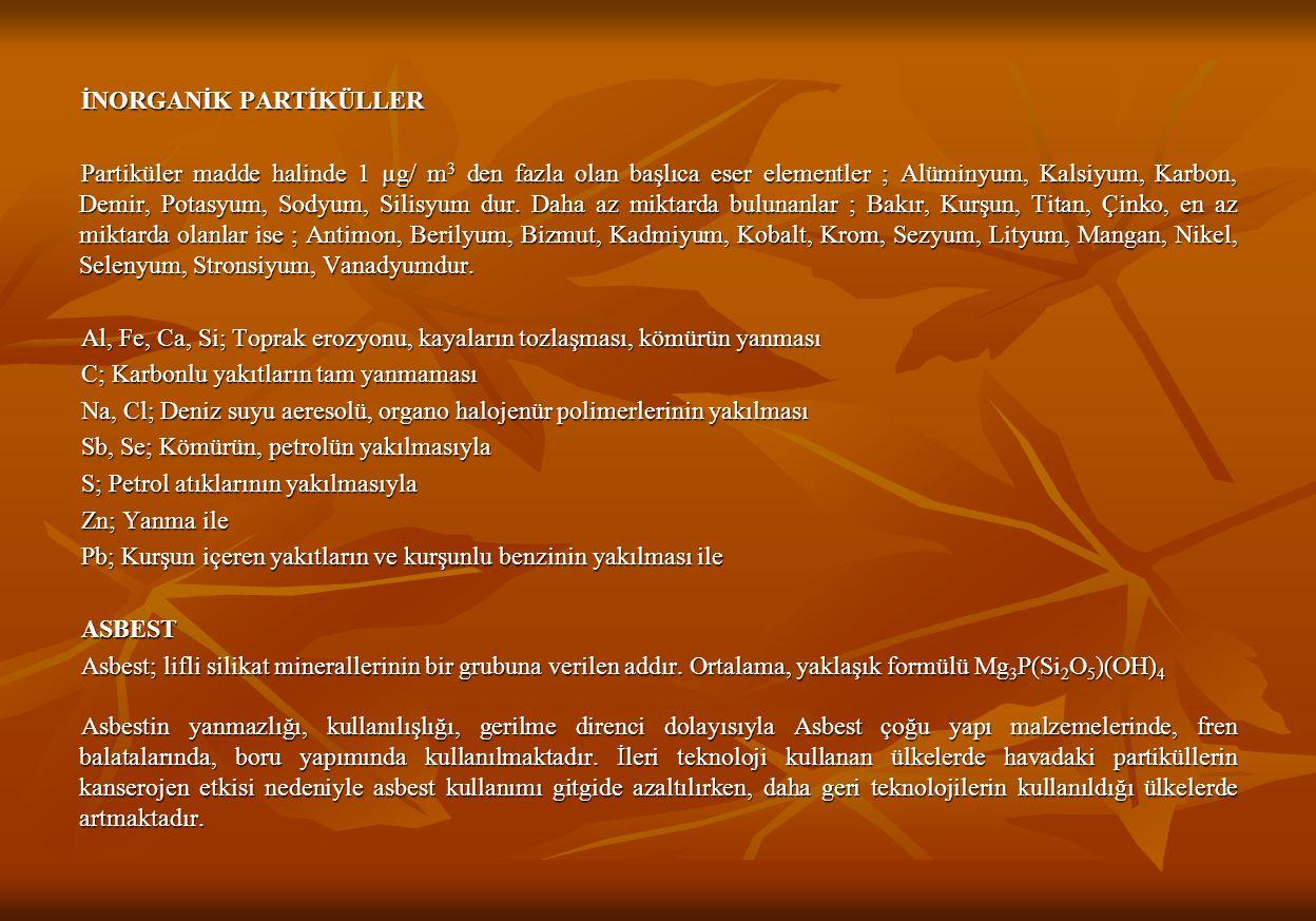 İNORGANİK PARTİKÜLLER