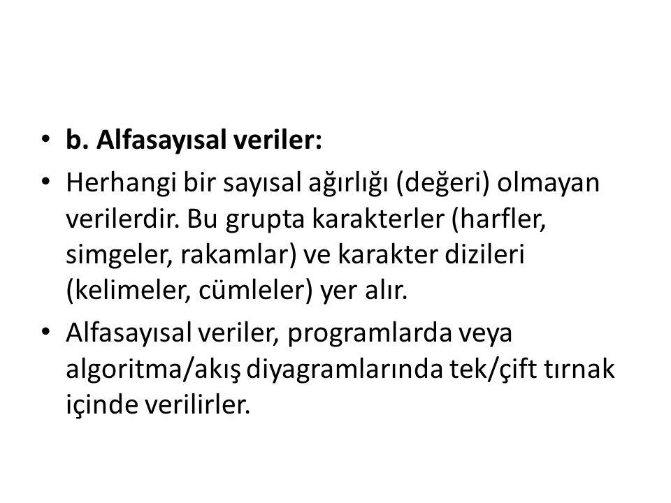 b. Alfasayısal veriler: