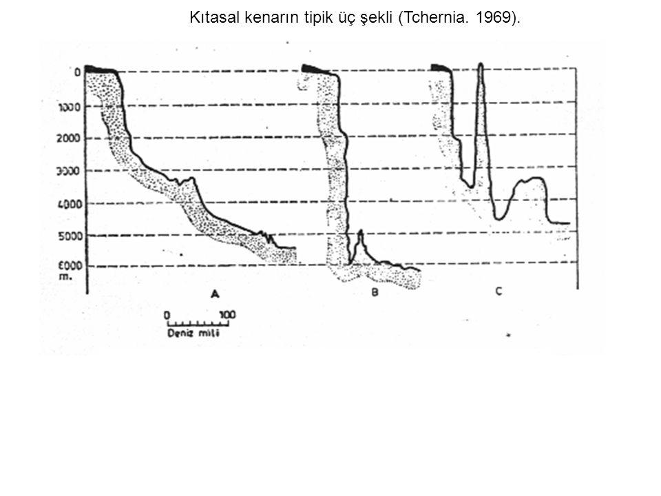Kıtasal kenarın tipik üç şekli (Tchernia. 1969).