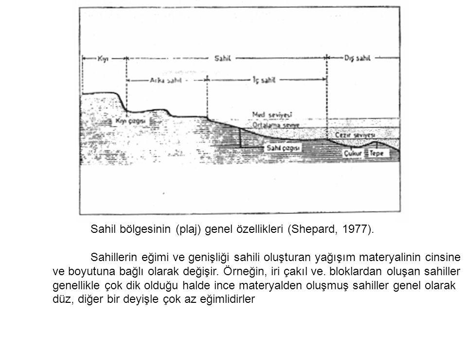 Sahil bölgesinin (plaj) genel özellikleri (Shepard, 1977).
