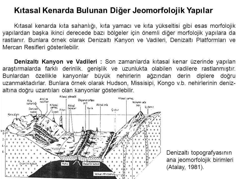 Kıtasal Kenarda Bulunan Diğer Jeomorfolojik Yapılar