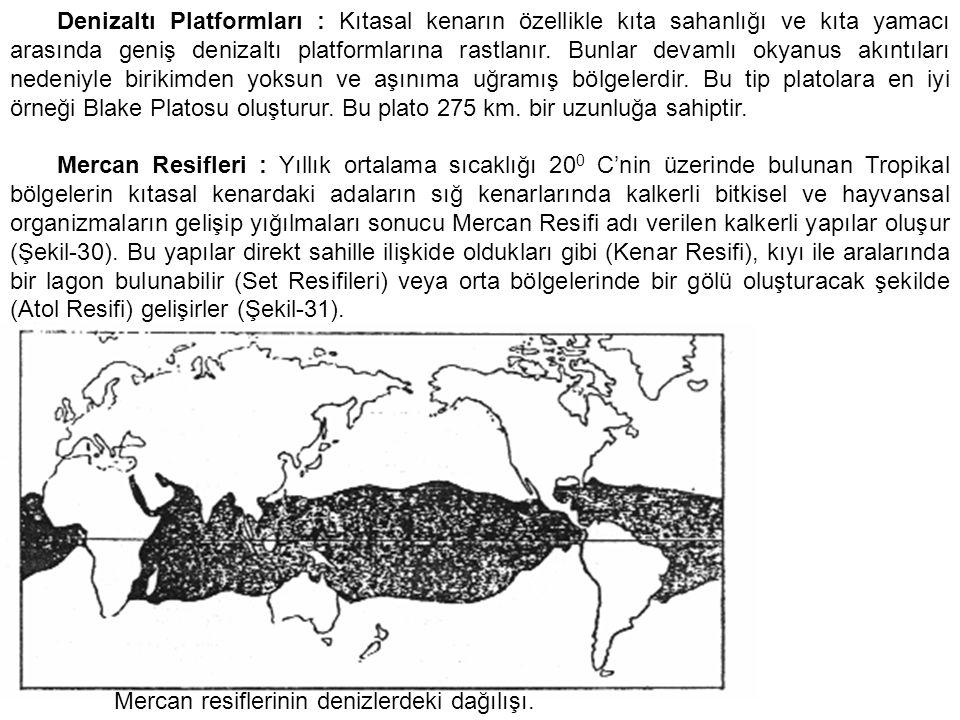 Denizaltı Platformları : Kıtasal kenarın özellikle kıta sahanlığı ve kıta yamacı arasında geniş denizaltı platformlarına rastlanır. Bunlar devamlı okyanus akıntıları nedeniyle birikimden yoksun ve aşınıma uğramış bölgelerdir. Bu tip platolara en iyi örneği Blake Platosu oluşturur. Bu plato 275 km. bir uzunluğa sahiptir.