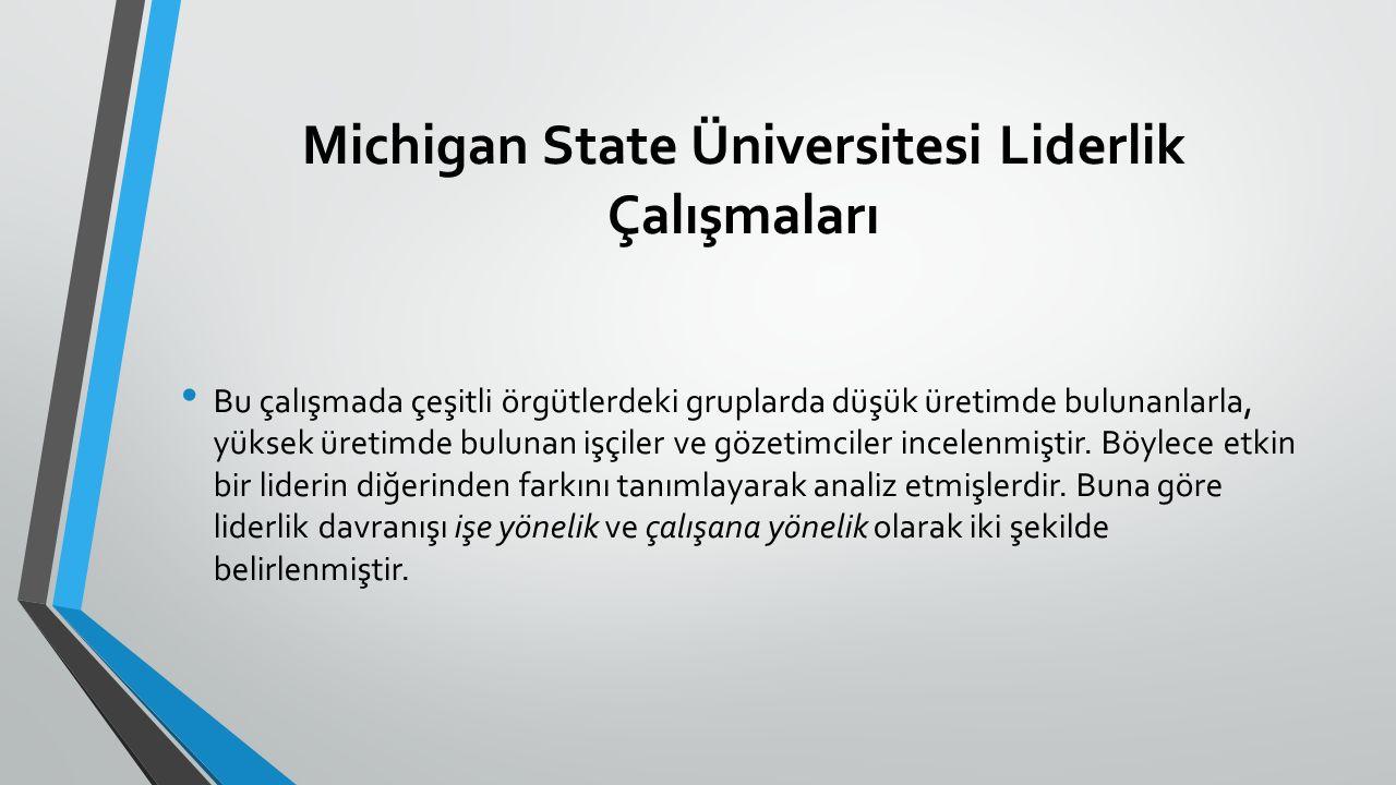 Michigan State Üniversitesi Liderlik Çalışmaları