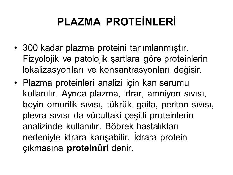 PLAZMA PROTEİNLERİ