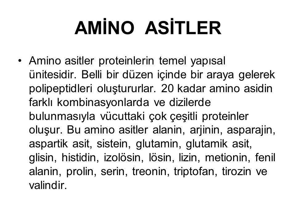 AMİNO ASİTLER