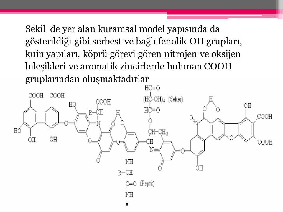 Sekil de yer alan kuramsal model yapısında da gösterildiği gibi serbest ve bağlı fenolik OH grupları, kuin yapıları, köprü görevi gören nitrojen ve oksijen bileşikleri ve aromatik zincirlerde bulunan COOH gruplarından oluşmaktadırlar