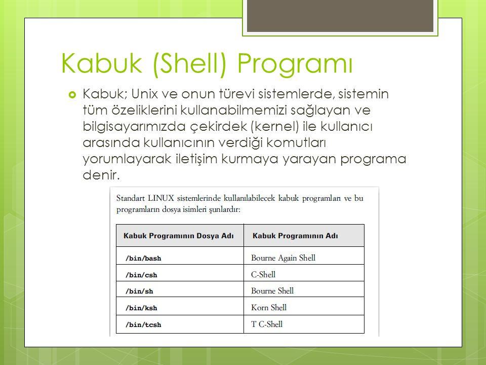 Kabuk (Shell) Programı