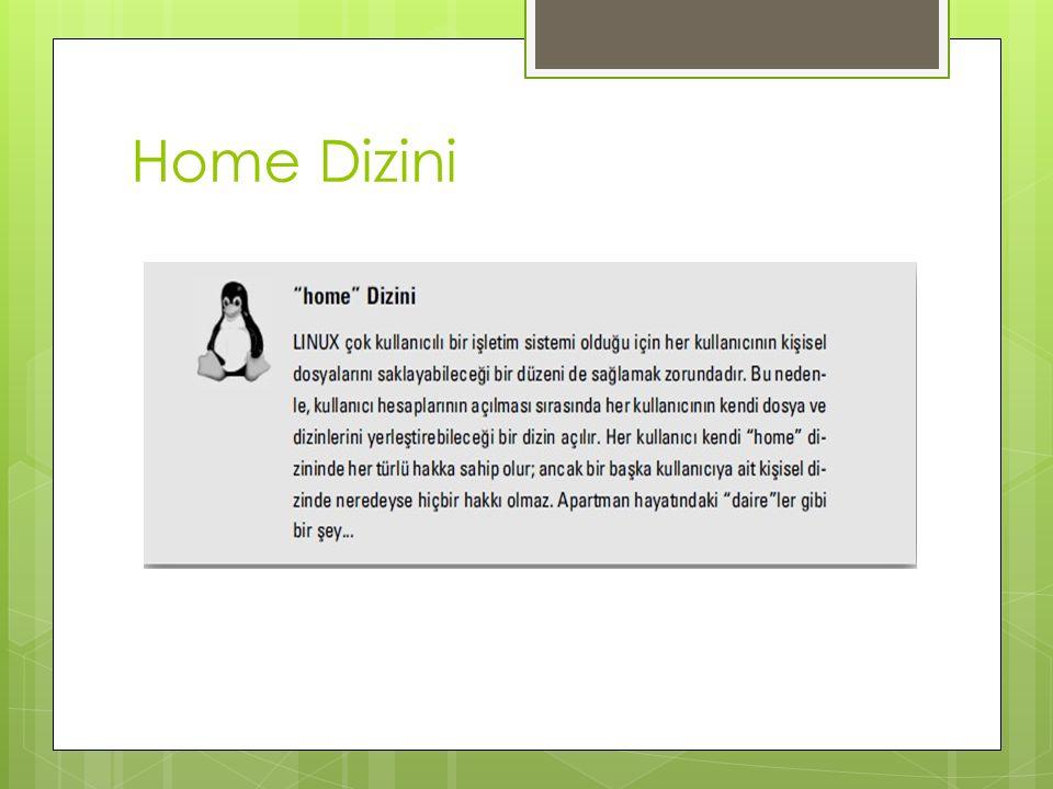Home Dizini
