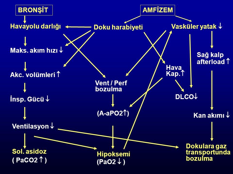 Akut / Kronik akciğer hastalığı
