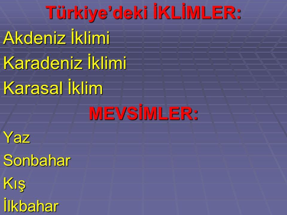 Türkiye'deki İKLİMLER:
