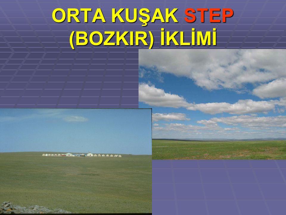 ORTA KUŞAK STEP (BOZKIR) İKLİMİ