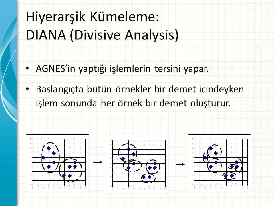 Hiyerarşik Kümeleme: DIANA (Divisive Analysis)