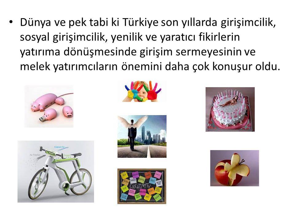 Dünya ve pek tabi ki Türkiye son yıllarda girişimcilik, sosyal girişimcilik, yenilik ve yaratıcı fikirlerin yatırıma dönüşmesinde girişim sermeyesinin ve melek yatırımcıların önemini daha çok konuşur oldu.