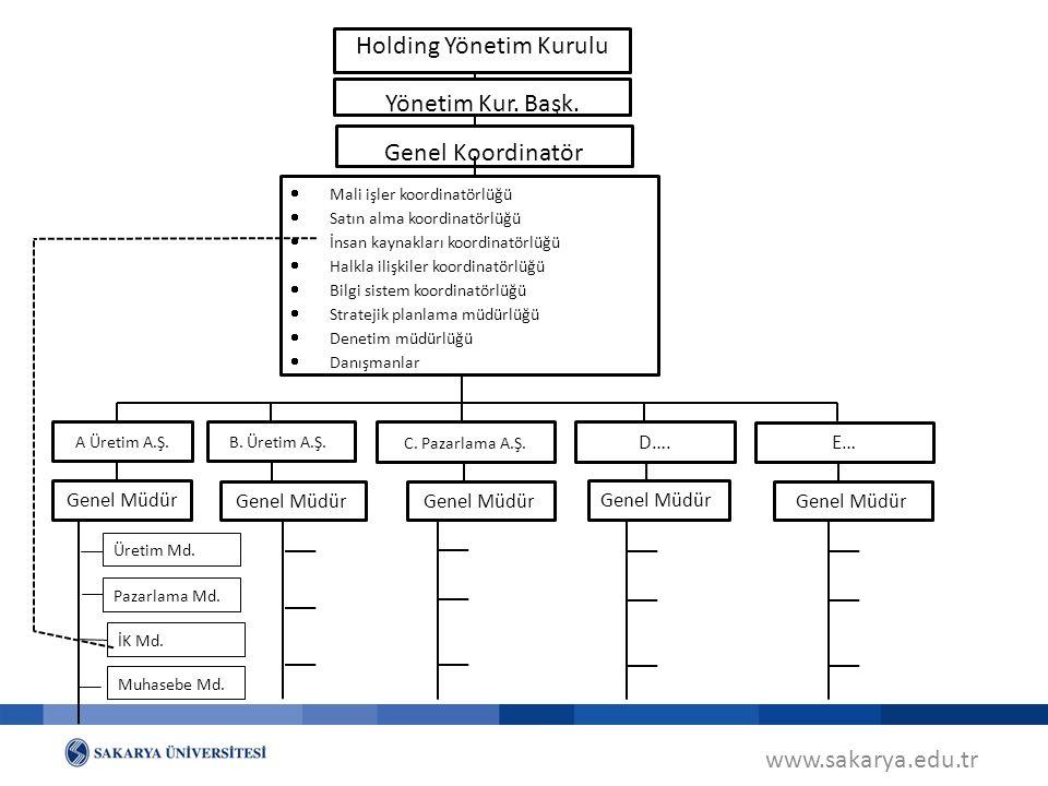 Holding Yönetim Kurulu