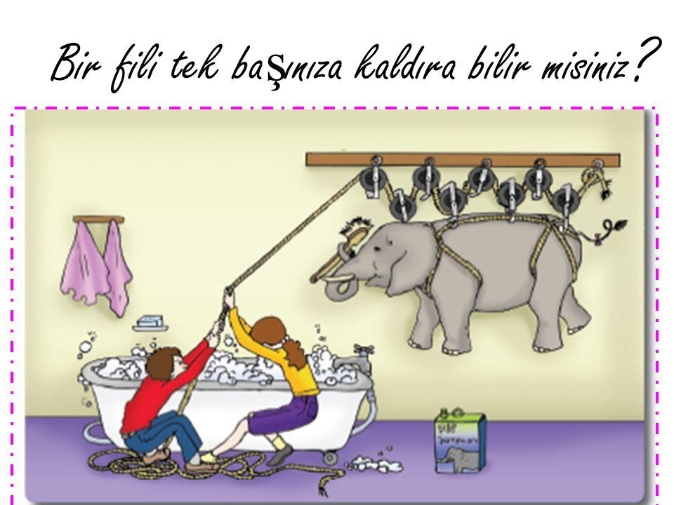 Bir fili tek başınıza kaldıra bilir misiniz