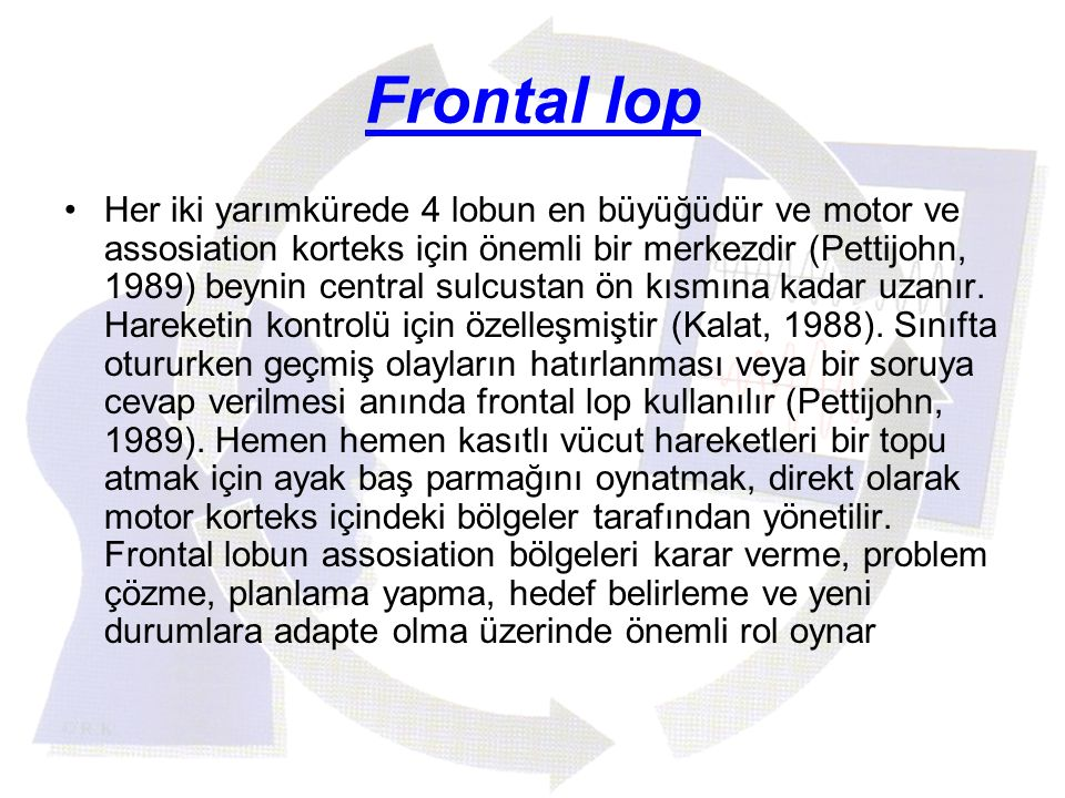 Frontal lop