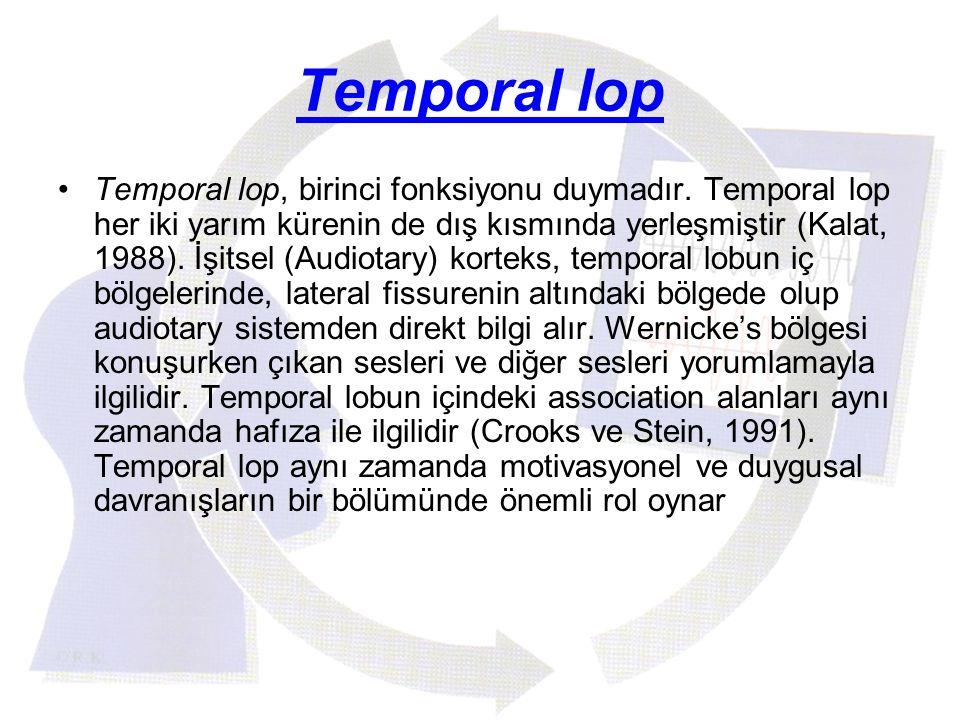 Temporal lop